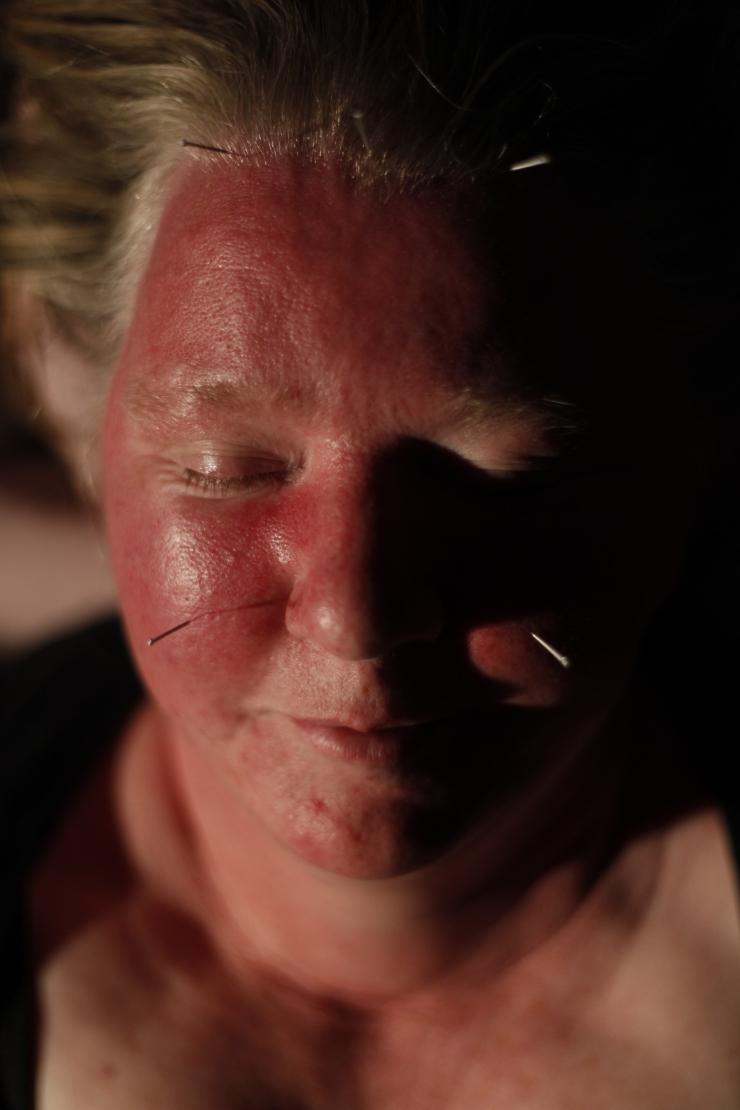 Hilary Gilligan Healing the Artist 2012 Sligo 4