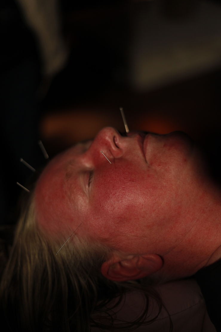 Hilary Gilligan Healing the Artist 2012 Sligo 6